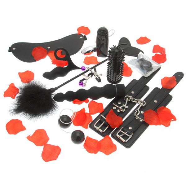 Amazing Pleasure Sex Toy Kit - For The Closet