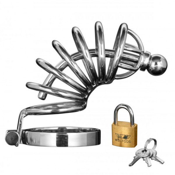 Asylum 6 Ring Locking Chastity Cage - For The Closet