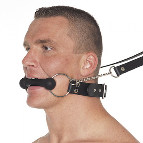 Leather Horse Bit Gag and Reins - For The Closet