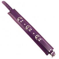 Rouge Garments Purple Padded Collar