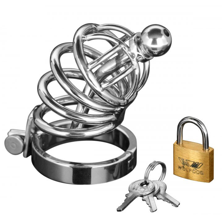 Asylum 4 Ring Locking Chastity Cage - For The Closet